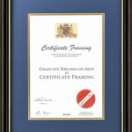 A4 Professional Institution Certificate Frames